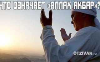 Что значит «аллах акбар»