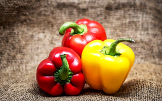 Как посеять перец